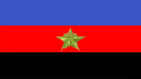 File:Hammish Monovia flag.png