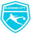 Blackoak City logo.png
